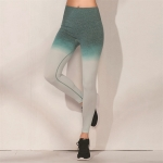 Women's Ombre Leggings Yoga Seamless Green High Waisted Gym Tights