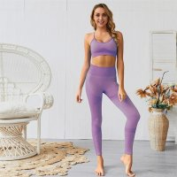 Women's Seamless Workout Pants Violet And Yoga Bras Outfit